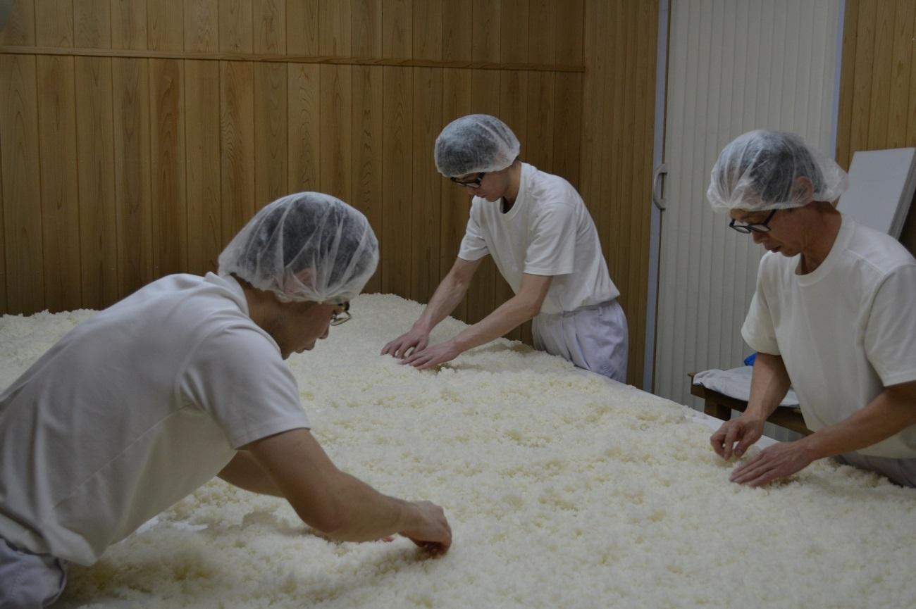 麹室(こうじむろ)での作業中。麹の種も手作業で撒いていきます