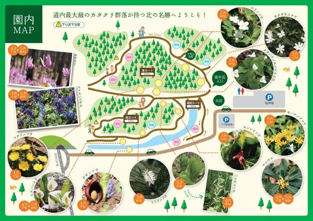 男山自然公園の散策コース